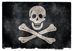 pirate photo
