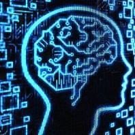 16317118248_41f7bd43a7_brain