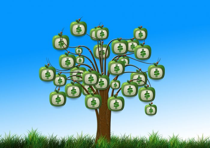 Money tree with dollar sign apples
